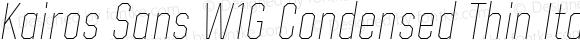 Kairos Sans W1G Condensed Thin Italic