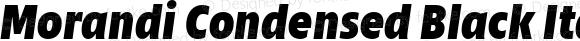 Morandi Condensed Black Italic