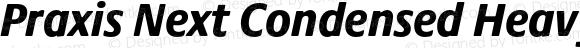 Praxis Next Condensed Heavy Italic