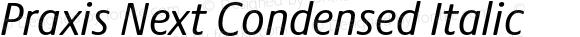 Praxis Next Condensed Italic