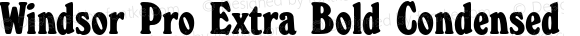 Windsor Pro Extra Bold Condensed