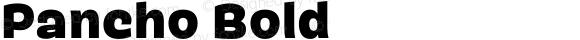 Pancho Bold