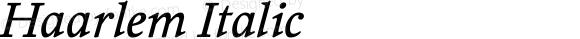 Haarlem Italic