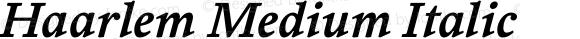 Haarlem Medium Italic