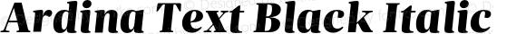 Ardina Text Black Italic