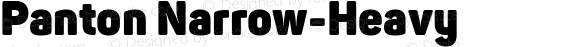 Panton Narrow-Heavy