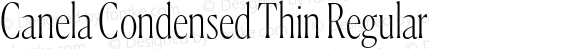 Canela Condensed Thin