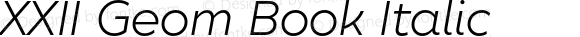 XXII Geom Book Italic