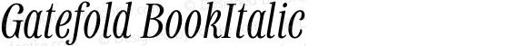 Gatefold BookItalic