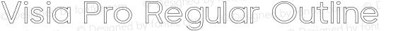 Visia Pro Regular Outline