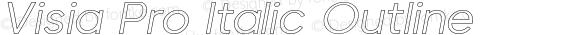 Visia Pro Italic Outline