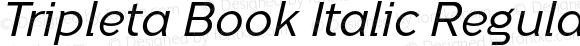 Tripleta Book Italic Regular
