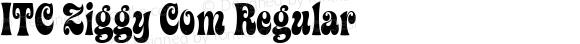 ITC Ziggy Com Regular Version 1.01