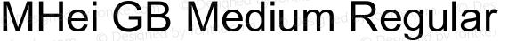 MHei GB Medium Regular Version 2.02