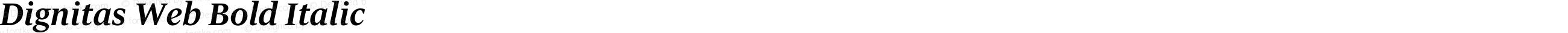 Dignitas Web Bold Italic