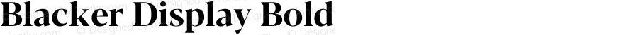 Blacker Display Bold Version 1.0 | w-rip DC20180110