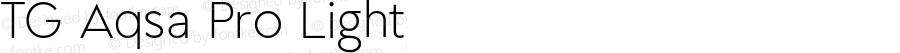 TG Aqsa Pro Light Version 1.000;PS 001.000;hotconv 1.0.88;makeotf.lib2.5.64775;YWFTv17