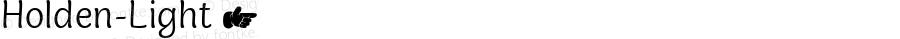 Holden-Light ☞ Version 1.000;com.myfonts.easy.zetafonts.holden.light.wfkit2.version.5cZq