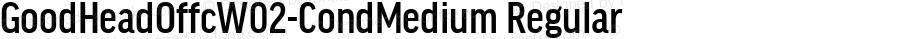 GoodHeadOffcW02-CondMedium Regular Version 7.504
