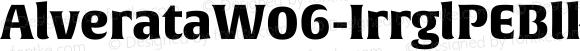 AlverataW06-IrrglPEBlk Regular Version 1.1