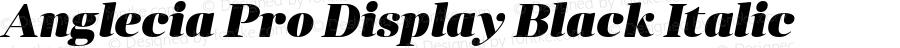 Anglecia Pro Display Black Italic Version 001.000
