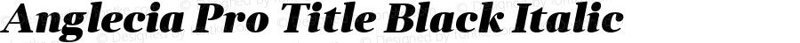 Anglecia Pro Title Black Italic Version 001.000