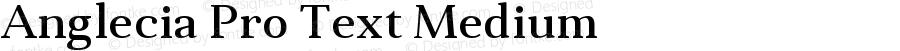 Anglecia Pro Text Medium Version 001.000