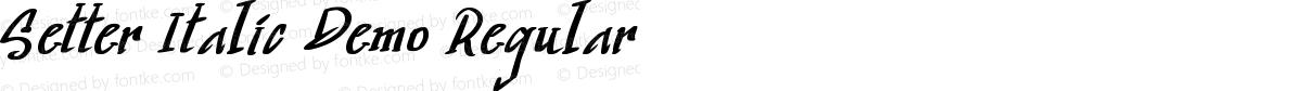 Setter Italic Demo Regular