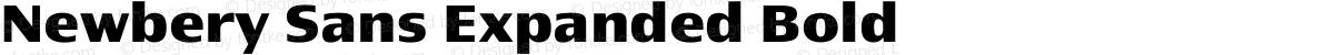 Newbery Sans Expanded Bold
