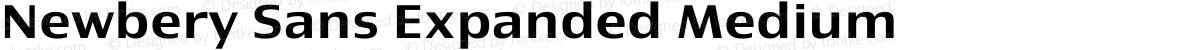 Newbery Sans Expanded Medium