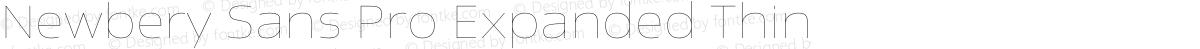 Newbery Sans Pro Expanded Thin