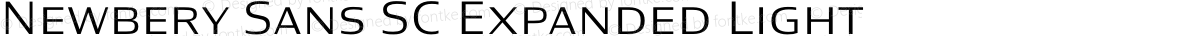Newbery Sans SC Expanded Light
