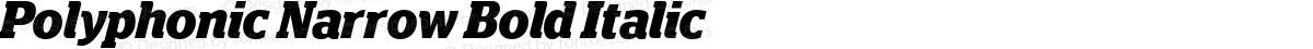 Polyphonic Narrow Bold Italic