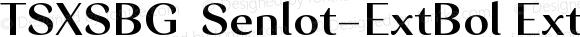 TSXSBG+Senlot-ExtBol ExtBol Version 1.0