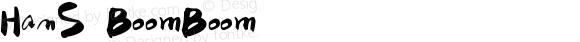 HanS BoomBoom Version 1.00 December 19, 2017, initial release