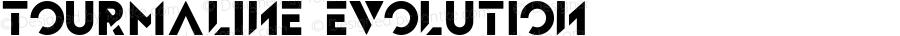 Tourmaline Evolution Version 1.007