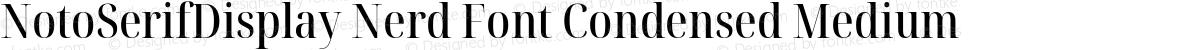 NotoSerifDisplay Nerd Font Condensed Medium