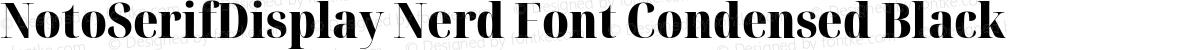 NotoSerifDisplay Nerd Font Condensed Black