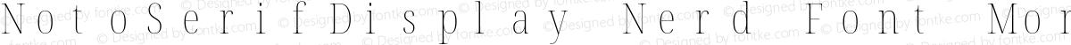 NotoSerifDisplay Nerd Font Mono Condensed Thin