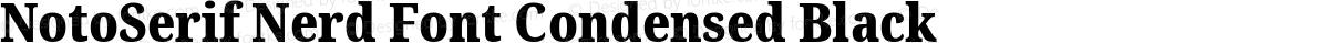 NotoSerif Nerd Font Condensed Black