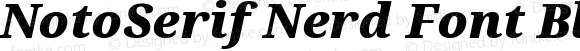 NotoSerif Nerd Font Black Italic