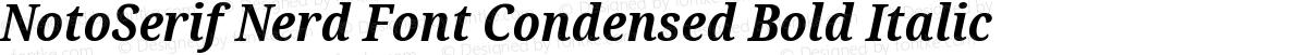 NotoSerif Nerd Font Condensed Bold Italic