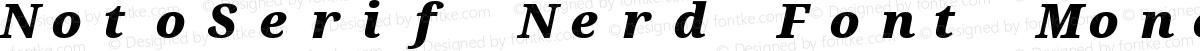 NotoSerif Nerd Font Mono Black Italic