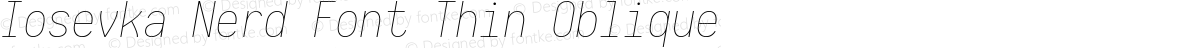 Iosevka Nerd Font Thin Oblique