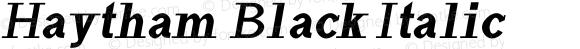 Haytham Black Italic