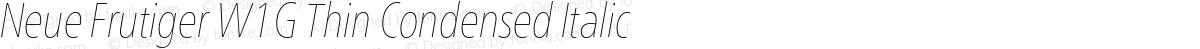 Neue Frutiger W1G Thin Condensed Italic