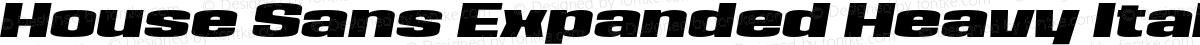 House Sans Expanded Heavy Italic
