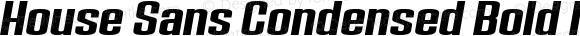House Sans Condensed Bold Italic