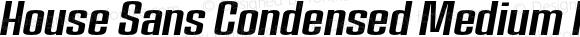 House Sans Condensed Medium Italic