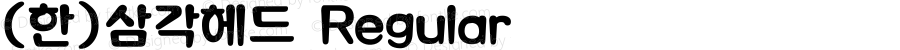 (한)삼각헤드 Regular HAN Font Conversion Ver 1.0 by Han-Media